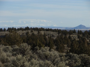 View from the Northern Great Basin Experimental Range. Juniper encroachment is evident.