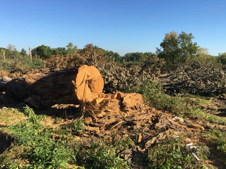 bypass oaks3
